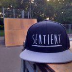 Sentient Clothing